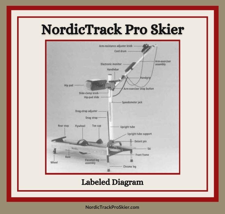 NordicTrack Pro Skier Labeled Parts Diagram